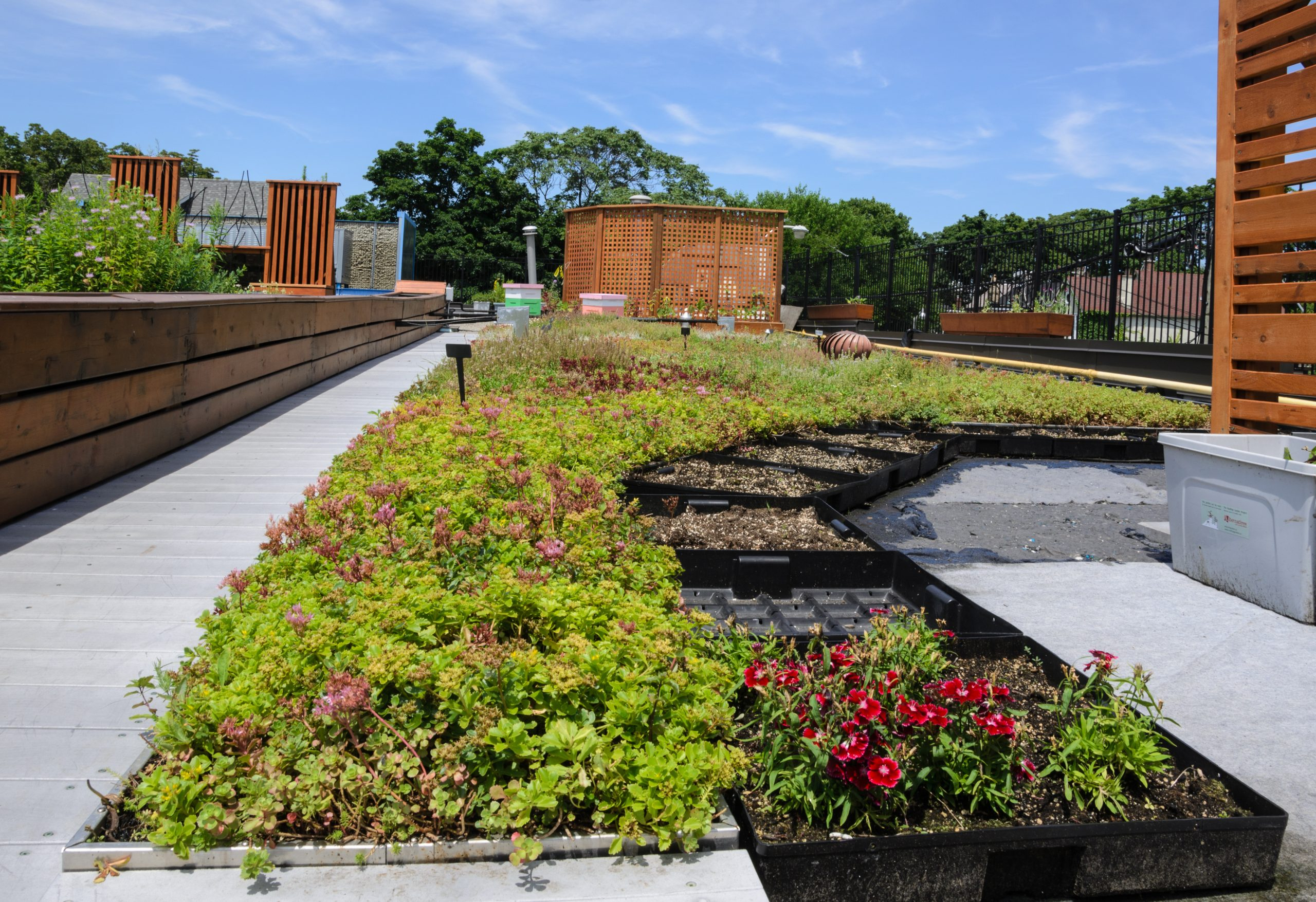 Green Roof | Permaroof UK