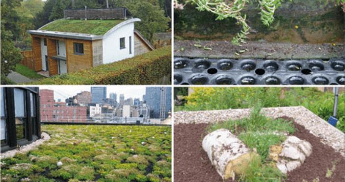 Permaroof UK DIY Green Roof